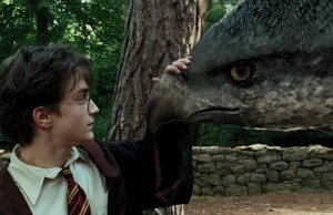 Harry_Potter_Buckbeak